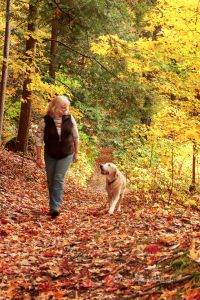 woman and yellow lab