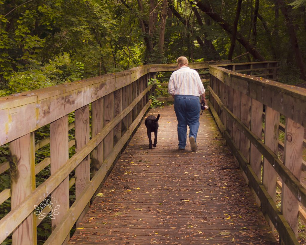 owner and dog walking the trails