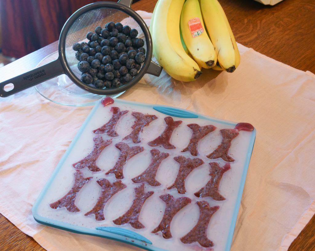 blueberry banana dog coolers