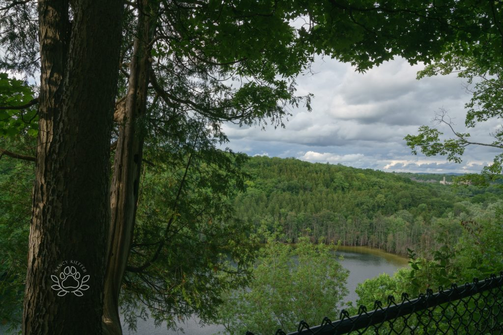 Clarks reservation state park view from the top