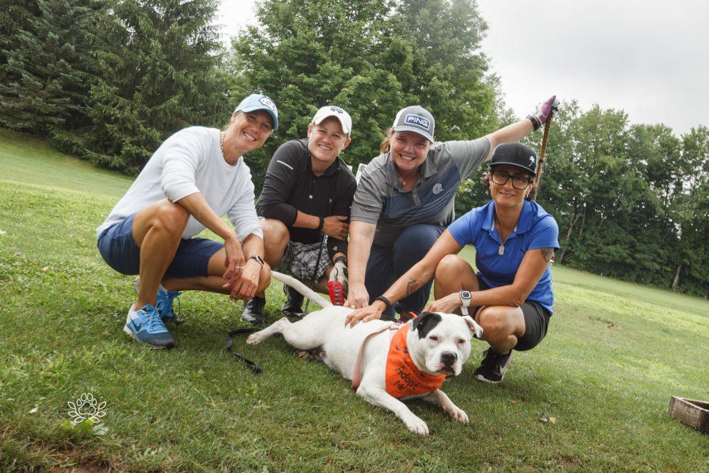 dog with golf team