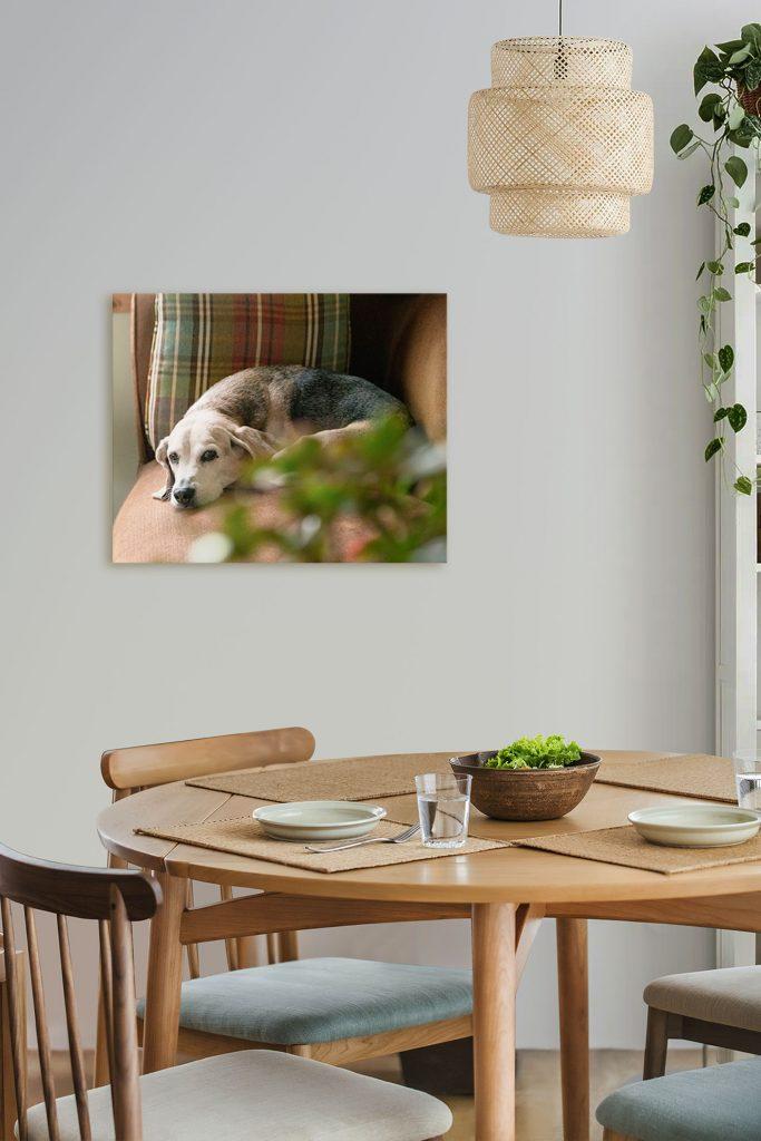 Cooper in wall portrait
