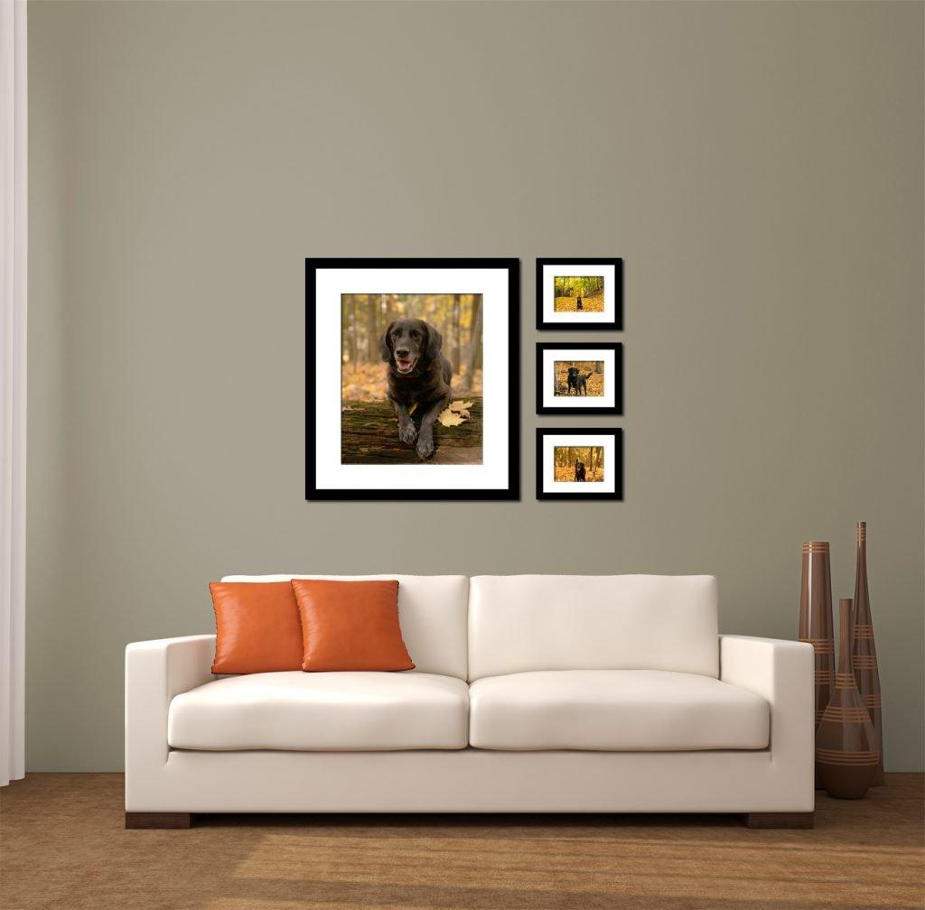 Wall display 4 images
