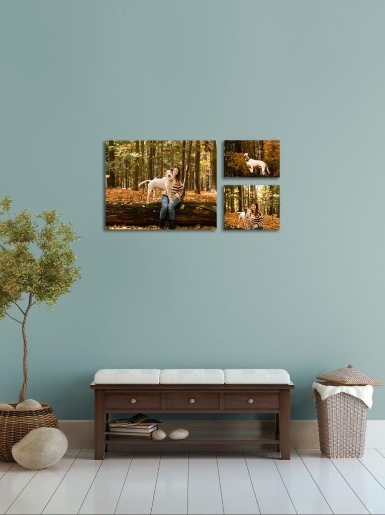 Wall display 3 images