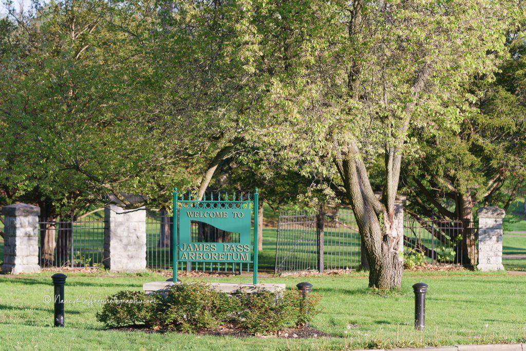 James Pass Arboretum